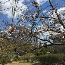 「芽吹きの春。URA部門にも新しい仲間が増えました!」特集